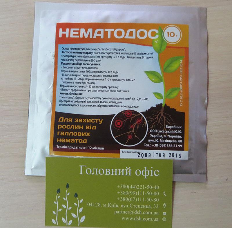Біологічний препарат від нематоди ґрунту