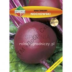 Ноховський