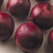 Стійкий до повітряної і ґрунтової засухи, фузаріозу, толерантний до рожевої гнилі.