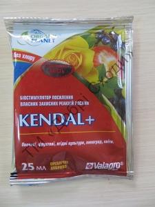 Кендал (Kendal)