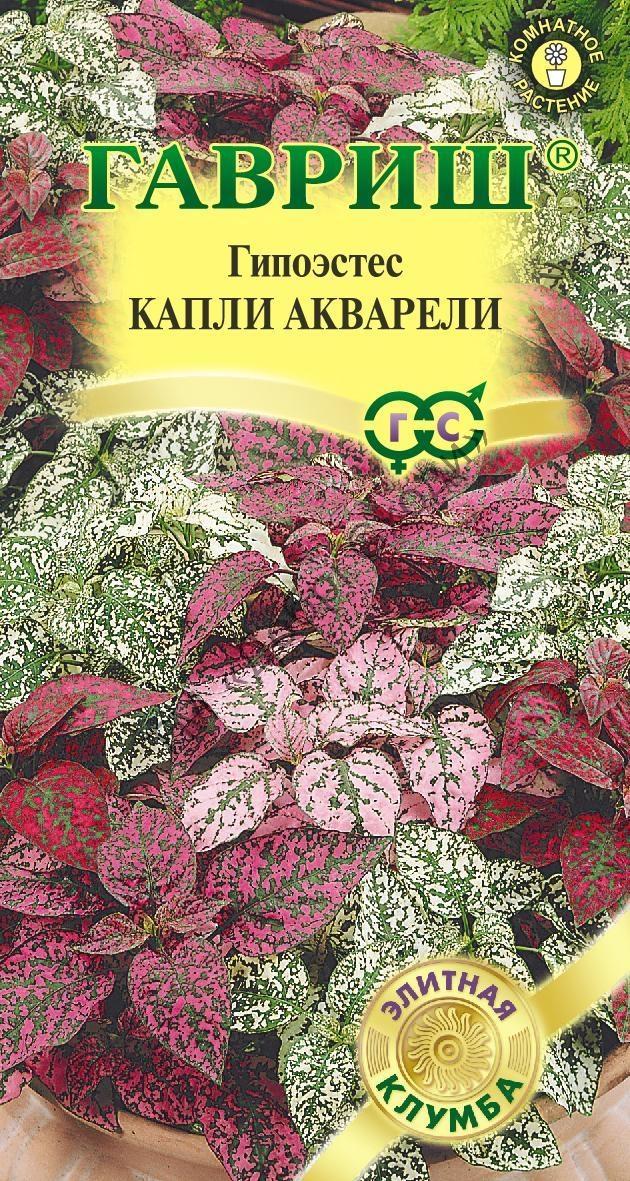 Купить семена комнатных цветов в киеве