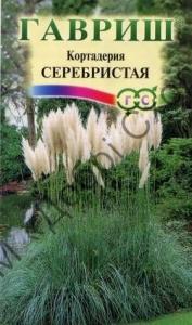 Кортадерія Серебриста (Пампасна трава) 0,01 г
