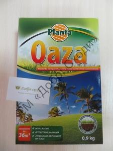 Planta Oaza