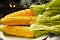 "Суперсолодка кукуруза | "" Добрі Сходи"""