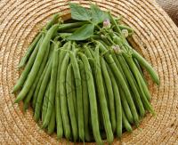 Гладкі, білі плоди з відмінними смаковими якостями.