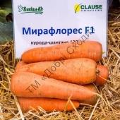 """Насіння моркви Шантане Ред Коред   """" Добрі Сходи"""""""