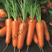 Поєднання врожайності та високої якості.