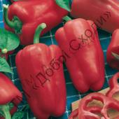 "Сладкий, ярко красный перец, массой 190 г. | ""Добрі сходи"""
