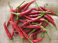 Дуже гострий смак, використовується для приправ та спецій.