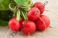 Ультраранній рекомендований для вирощювання у відкритому ґрунту та плівкових теплицях.