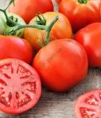 Унікальний, з надзвичайно великими плодами (330 г) гібрид рожевого томату.