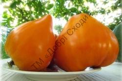 Бычье сердце оранжевое 20шт
