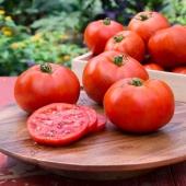 Продуктивний гібрид томату, гарно підходить для виробництва соку.