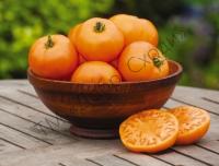 З підвищеним вмістом каротину, рекомендується для дитячого харчування.