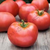 Рожевий, кущовий томат з унікальними смаковими якостями.