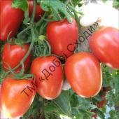 Еталон салатного типу серед томатів.